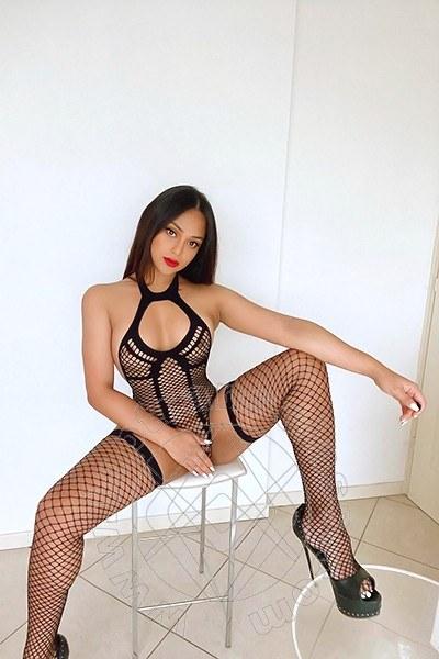 Sammy Asiatica  PARMA 3883472199